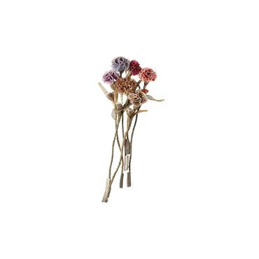 Silk Carnation